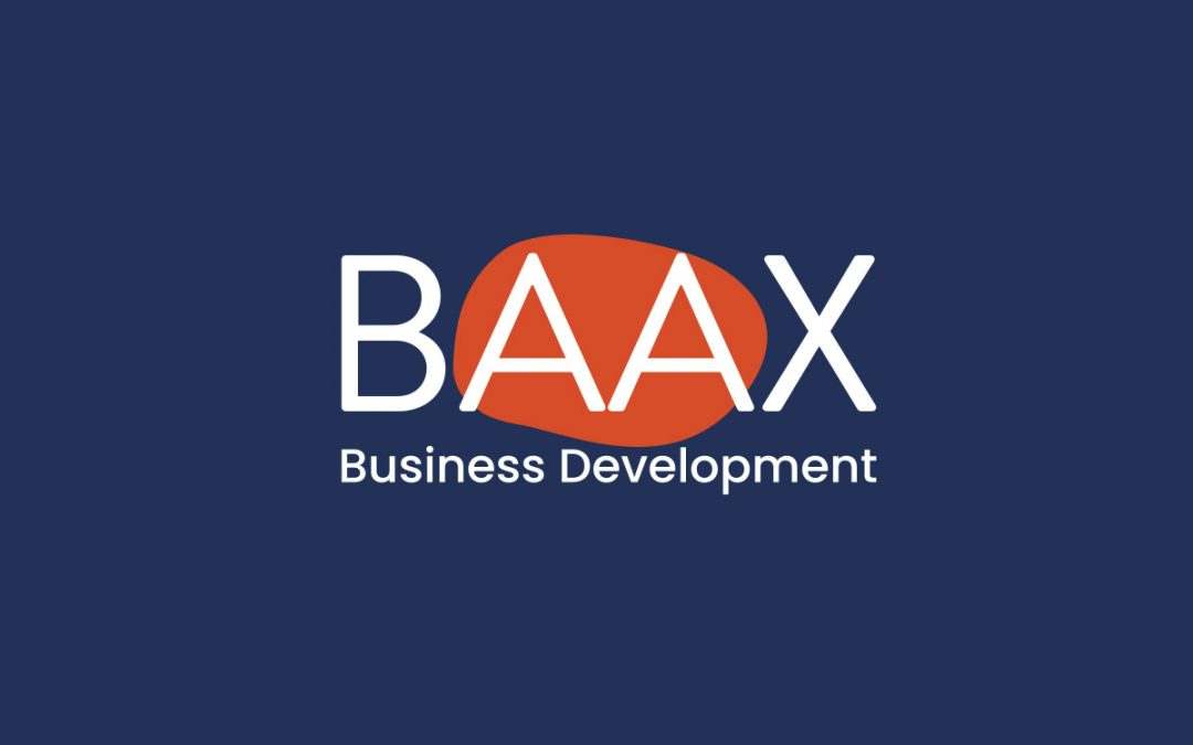 Offre d'emploi –  Business Manager
